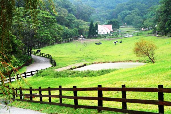 自然生態區則分為乳牛生態區、蝴蝶生態區、可愛動物區、自然步道和水域生態區,讓游客親近自然生態與大自然交融,在草原上奔跑嬉戲,寬闊的飛牛牧場提供您最自然的生態享受。乳牛生態區在飛牛牧場可是招牌區域,廣大的草原放養著數種乳牛讓游客以最親近的方式親近乳牛;蝴蝶生態區成立于民國82年,占地約250坪,園內廣植蜜源植物進行蝴蝶保復工作,目前約有10多種、150至200只蝴蝶,讓游客了解蝴蝶從卵、幼蟲、蛹到成蟲的完整生活;可愛動物區中有許多迷人的動物,例如貝多綿羊、紐西蘭白兔、臺灣黑山羊等等,可以喂它們吃飼料、牧草,
