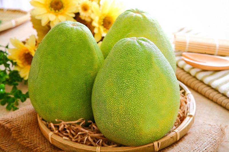 水果柚子动物造型
